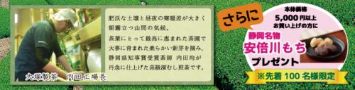 本場掛川より、静岡県知事賞受賞茶師の匠の技をお届けいたします